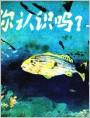 你认识吗?--海鱼